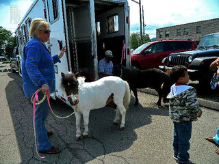 Mini horses go to Pre school in Endicott