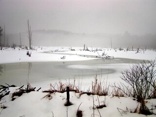 Braggs Pond Brook winter scenes