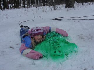 Elusive Snow Turtle Sighted !!