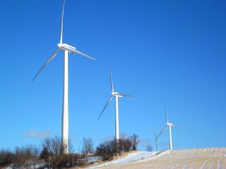 Winter Windmills