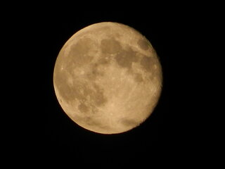 Last Night' Full Moon