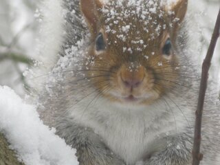 Hey Dave--Not everyone likes snow!!