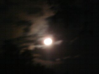 super moon hangin out at the pond