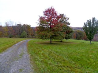 Fall has arrived in Vestal!