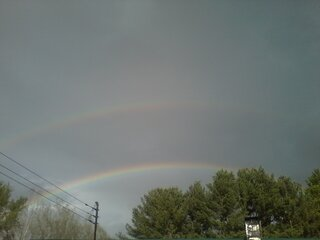 Apalachin Rainbows