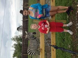 Charlie the zebra loves the camera