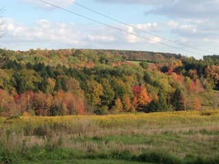 Chenango County fall