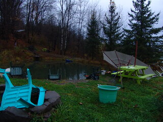 Wind Damage at my pond