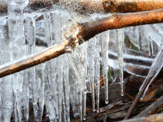 The Beauty of an Icicle