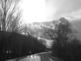 Rail Trail in Black & White