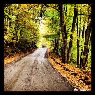 Country roads and changing seasons.