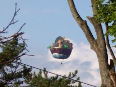 The Ark Balloon !!!