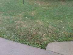 2 1/4 Inch Diameter Hail Greene Airport