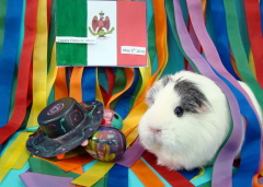Athena celebrates Cinco de Mayo!