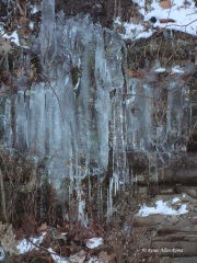 Winter's Icy touch