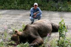 This is why they carry guns in Alaska