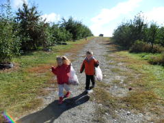 Apple Picking Season!