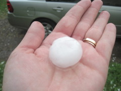 Golf Ball sized hail in Whitney Point!