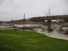 The creek is our new lawn