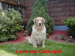 Our casey