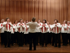 The Carousel Harmony Chorus performed at