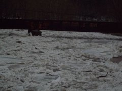 ICE jam in Chenango Forks