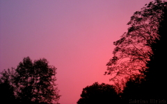 Pink sky at night...