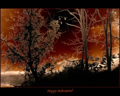Happy Halloween to All!!!