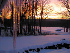Sunrise Through The Icicles