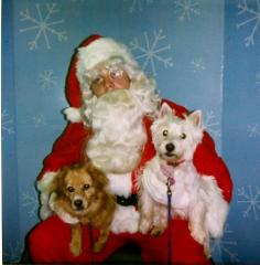 Zoey & Abby on Santa's lap