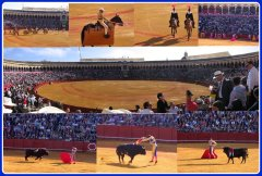 Bull fight in Sevilla Spain