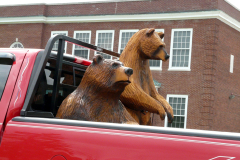 Bears Sighted in Whitney Point