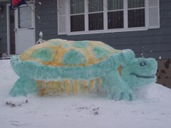 Turk the Snow Turtle  visits Otego