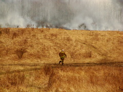 Brush Fire in Conklin