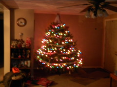 Our BIG tree this year