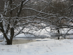 Otego creek in Laurens, NY