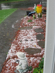 HAIL AND WATER ROKI BLVD NICHOLS,NY