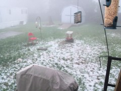 Hail Storm in Choconut, PA