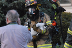 House Fire - Cat Rescue