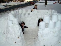 Vestal Snow Castle Picture