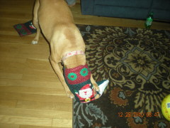 carly with her stocking