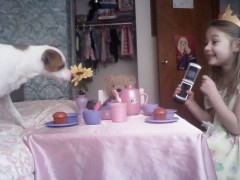 Abbie invited her dog to her tea party
