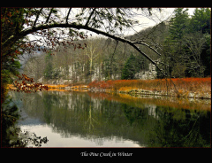 Early Winter at the Pine Creek