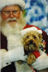 Gracie visits Santa at Creature Comforts