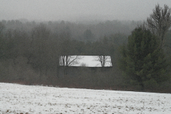 Barn and Trees in Fog Today