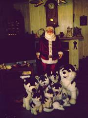 santa and his dogs