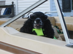 LADY  LOVES   GOING BOATING