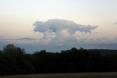Dinosaur Cloud