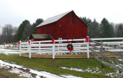 Holiday Barns