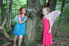 Fairies in The Back yard